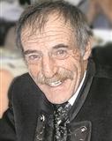 Heinrich Hohenegger